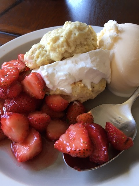 Easy and BEST EVER Homemade Strawberry Shortcake (From the Farm)